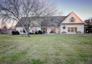 111 County Road 932, Alvin, TX 77511 (MLS #46622642) :: Magnolia Realty