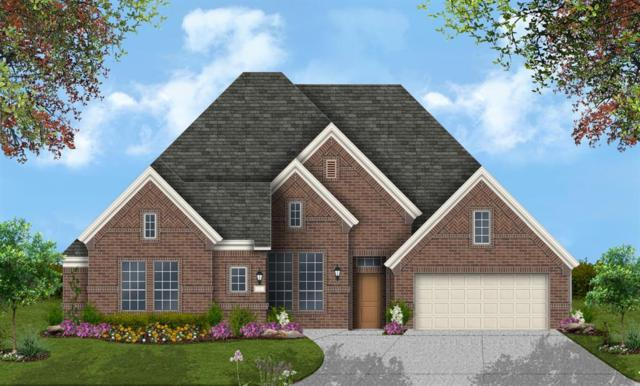 1709 Garden Point Lane, League City, TX 77573 (MLS #10054583) :: The Bly Team