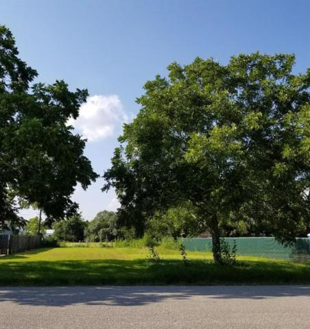 0 Fitz Road, Alvin, TX 77511 (MLS #10060938) :: Texas Home Shop Realty