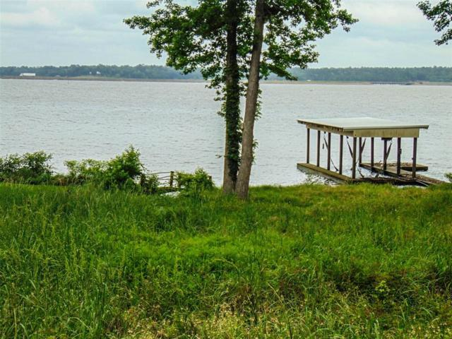 460 Lakefront Drive, Onalaska, TX 77360 (MLS #10081753) :: The Heyl Group at Keller Williams