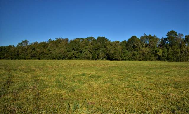 TBD County Road 2367, Hardin, TX 77575 (MLS #10149592) :: The Bly Team