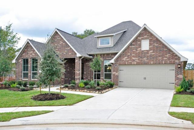 11106 English Holly Court, Tomball, TX 77375 (MLS #10170914) :: Giorgi Real Estate Group