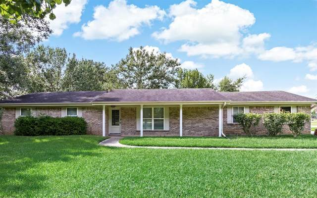 6995 Ellen Lane, Beaumont, TX 77708 (MLS #10208434) :: Christy Buck Team