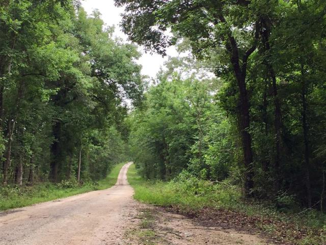 181 Ac Harrell Road, Coldspring, TX 77331 (MLS #10231848) :: The SOLD by George Team