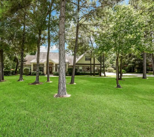 15469 Queen Elizabeth Court, Montgomery, TX 77316 (MLS #10242115) :: Krueger Real Estate