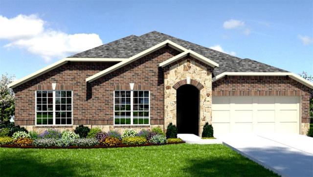 23002 Mulberry Tree Lane, Spring, TX 77389 (MLS #10243892) :: Krueger Real Estate