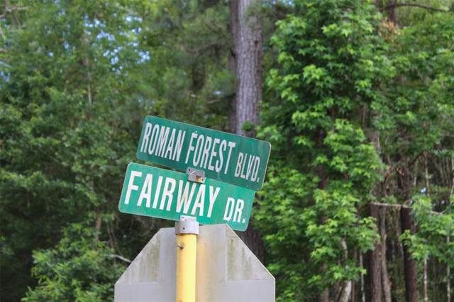 Lot 1 & 2 Roman Forest Boulevard, Roman Forest, TX 77357 (MLS #1024974) :: Texas Home Shop Realty