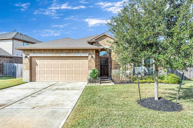 3666 Daintree Park Drive, Katy, TX 77494 (MLS #10286300) :: The Home Branch