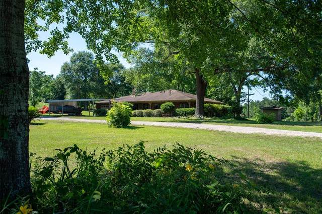 873 County Road 3050, Woodville, TX 75979 (MLS #10325140) :: The SOLD by George Team