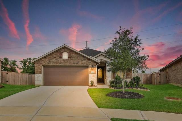 19450 Tobiano Park Drive, Tomball, TX 77377 (MLS #10325997) :: The Sansone Group
