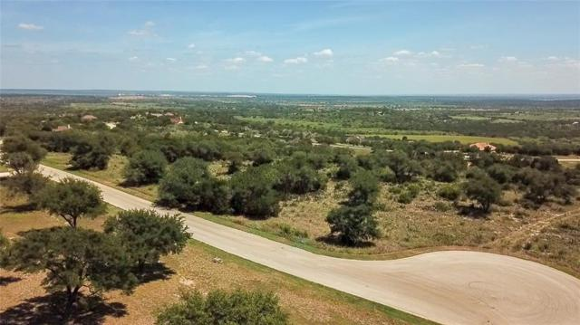 25 Stone Mountain Drive, Marble Falls, TX 78654 (MLS #10335153) :: The SOLD by George Team