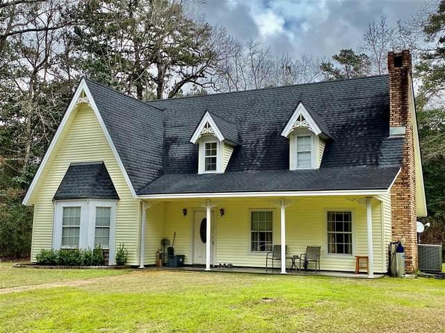 1039 W Black Gum Drive, Village Mills, TX 77663 (MLS #10349436) :: The Sansone Group