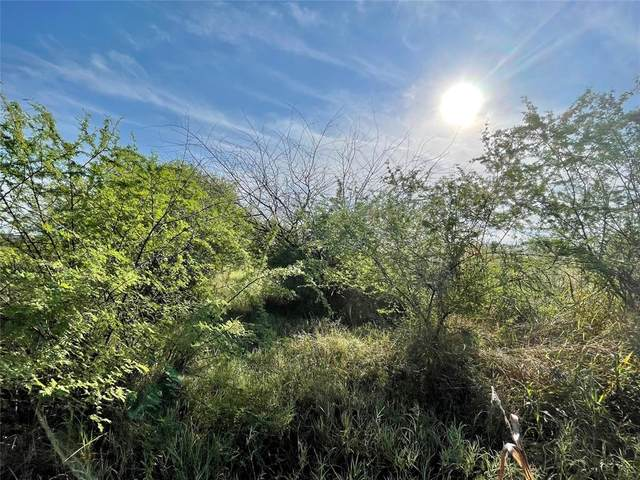 Lot 18 Cannon North Drive, Gonzales, TX 78629 (MLS #10349566) :: Connect Realty