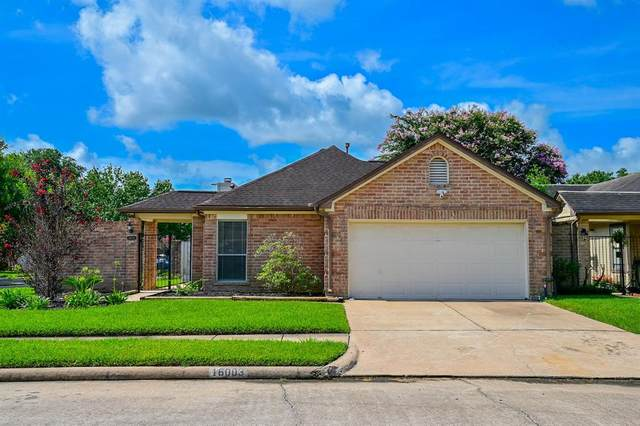 16003 Hidden Acres Drive, Houston, TX 77084 (#10385059) :: ORO Realty