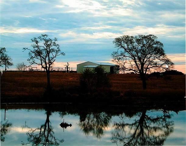 315.68 Acres County Road 132, Bedias, TX 77831 (MLS #10399182) :: The Sansone Group
