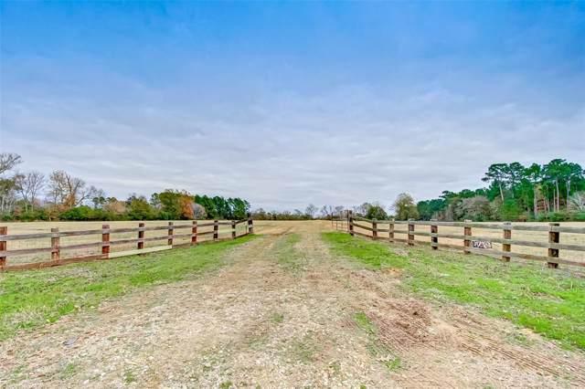 3255 Spring Branch Road, Montgomery, TX 77316 (MLS #10404941) :: Ellison Real Estate Team