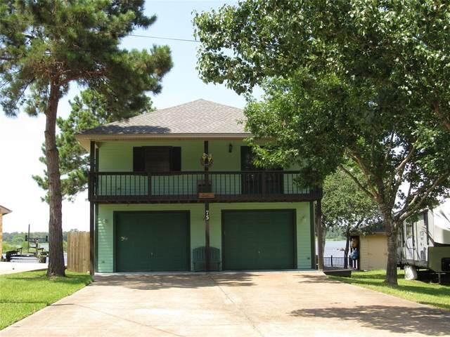 75 Lakeway Drive, Trinity, TX 75862 (MLS #10406100) :: The Lugo Group
