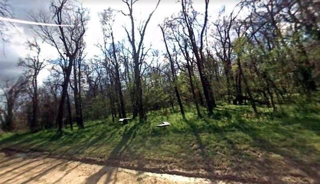 Lot 8 Big Tree, Dayton, TX 77535 (MLS #10417481) :: Green Residential