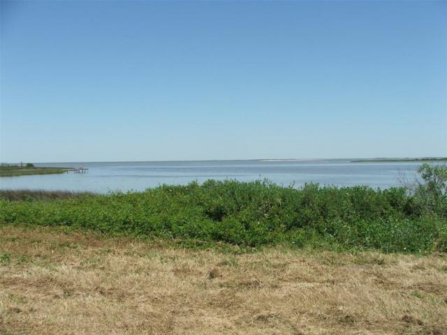 Lot 49 Tyrrell Street, Gilchrist, TX 77617 (MLS #10423684) :: Christy Buck Team