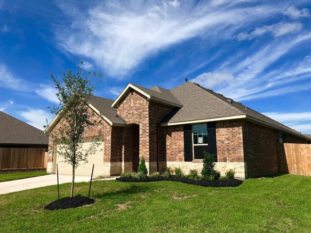 8319 Erasmus Landing Court, Houston, TX 77044 (MLS #10439884) :: The Johnson Team
