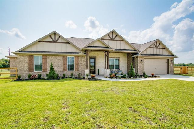 6711 Bayou Trail Drive, Alvin, TX 77511 (MLS #10445045) :: Texas Home Shop Realty