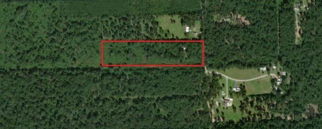 16284 Williamson Road, Splendora, TX 77372 (MLS #10445683) :: Magnolia Realty