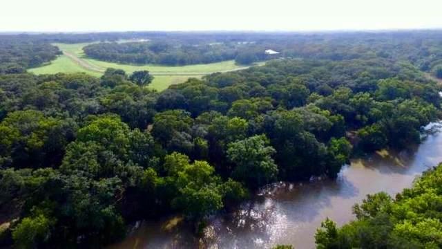 223 River Tree Drive, Palacios, TX 77419 (MLS #10464538) :: My BCS Home Real Estate Group