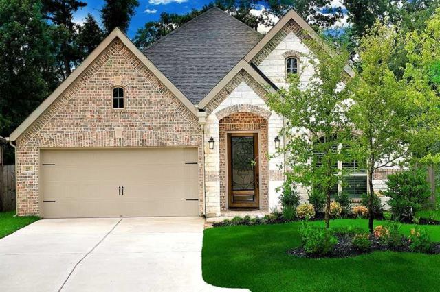 227 Capriccio Lane, Montgomery, TX 77316 (MLS #10483942) :: Christy Buck Team