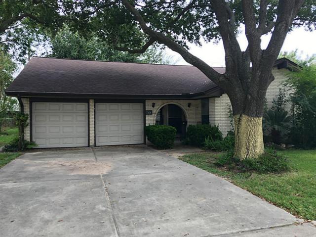 813 Ivy Avenue, Deer Park, TX 77536 (MLS #10524709) :: Christy Buck Team