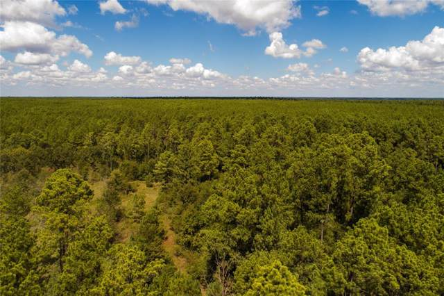 31.66 Acres Round Prairie Road, Huntsville, TX 77320 (MLS #10535885) :: The SOLD by George Team
