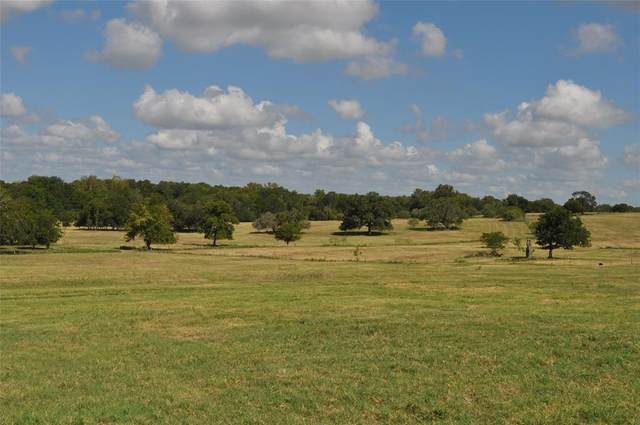 3614 Hwy 77 S, Schulenburg, TX 78956 (MLS #10593605) :: Green Residential