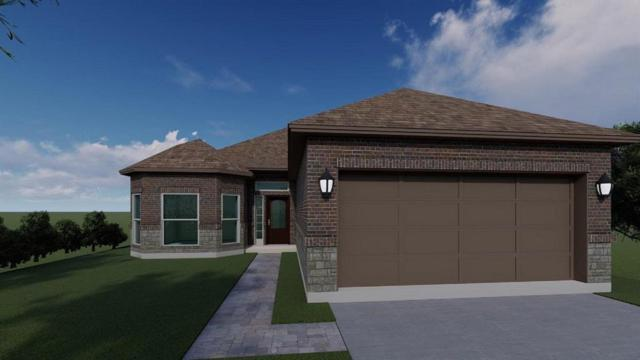 4509 Mallow Street, Houston, TX 77051 (MLS #10626812) :: The SOLD by George Team