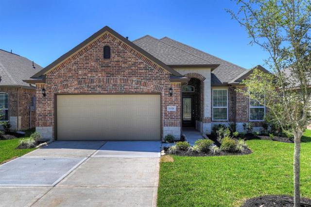 21326 Shadbush Avenue, Porter, TX 77365 (MLS #10634693) :: Texas Home Shop Realty