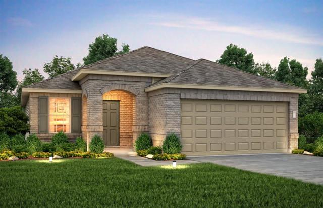 14627 Auburn Dusk Drive, Houston, TX 77069 (MLS #10684231) :: Texas Home Shop Realty