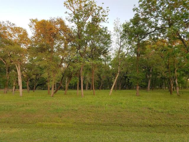 3118 Bayou View Court, Richwood, TX 77515 (MLS #10690482) :: Texas Home Shop Realty