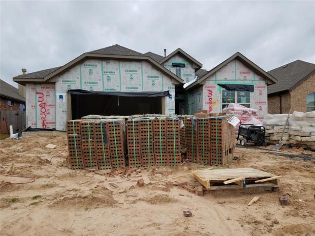 3826 Keatings Lagoon Court, Katy, TX 77494 (MLS #10705907) :: The Heyl Group at Keller Williams