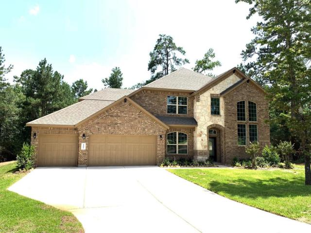 11009 Shadow View Drive, Conroe, TX 77304 (MLS #10710495) :: The Home Branch