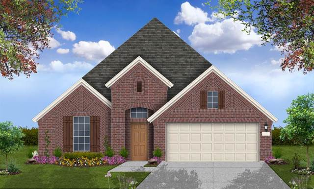 1223 Night Owl Court, Conroe, TX 77385 (MLS #10817206) :: The Home Branch