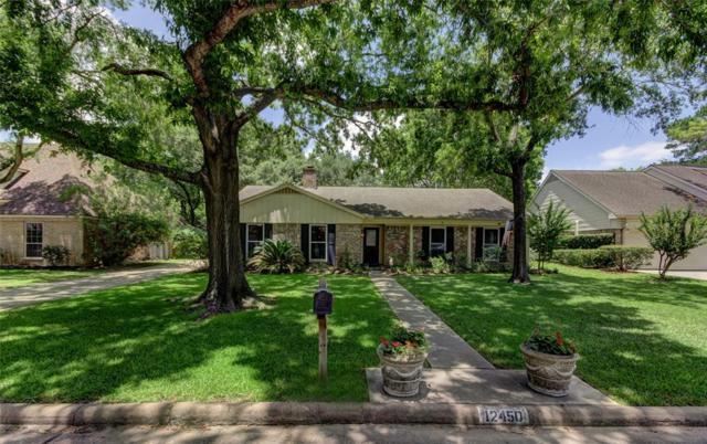 12450 Deep Spring Lane Lane, Houston, TX 77077 (MLS #10821508) :: Texas Home Shop Realty