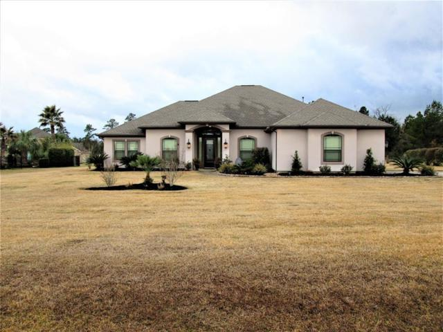 18786 Serene Water Drive, Montgomery, TX 77356 (MLS #10833687) :: The Home Branch