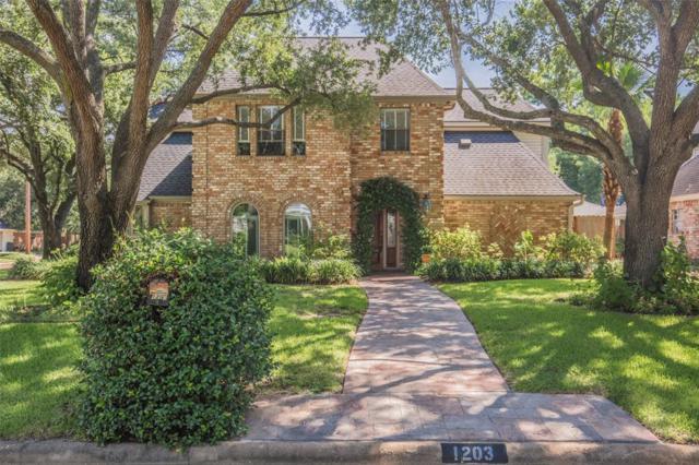 1203 Shillington Drive, Katy, TX 77450 (MLS #10843822) :: Giorgi Real Estate Group
