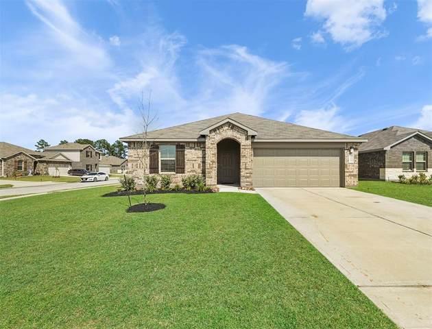 20103 Leaf River Circle, New Caney, TX 77357 (MLS #10846178) :: Parodi Group Real Estate