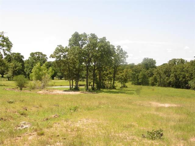 1409 Peach Creek Road, College Station, TX 77845 (MLS #10869075) :: Bray Real Estate Group
