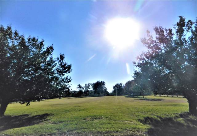 2.7 acres Brazos Hill Lane, Sealy, TX 77474 (MLS #10885660) :: Christy Buck Team