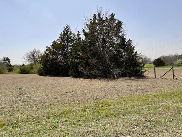 3122 Belvedere Road, Lancaster, TX 75134 (MLS #10895792) :: Keller Williams Realty