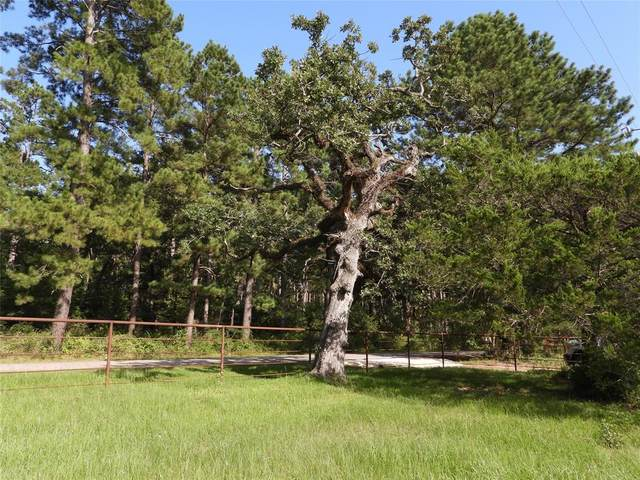 18855 Tbd 1 Bethel Road, Richards, TX 77873 (MLS #10915402) :: My BCS Home Real Estate Group