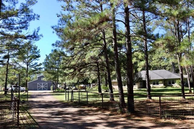 19444 Todd Road, Magnolia, TX 77355 (MLS #10927310) :: Texas Home Shop Realty