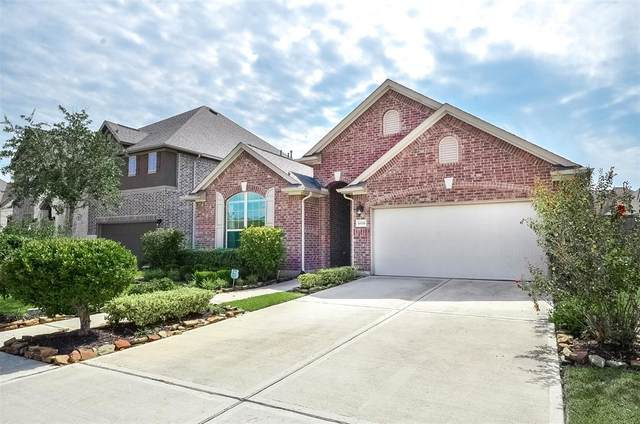 10038 10038 Harbor Light Drive Drive, Missouri City, TX 77459 (MLS #10942842) :: Ellison Real Estate Team