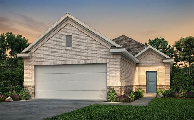 10722 Catclaw Court, Tomball, TX 77375 (MLS #10957614) :: Lerner Realty Solutions