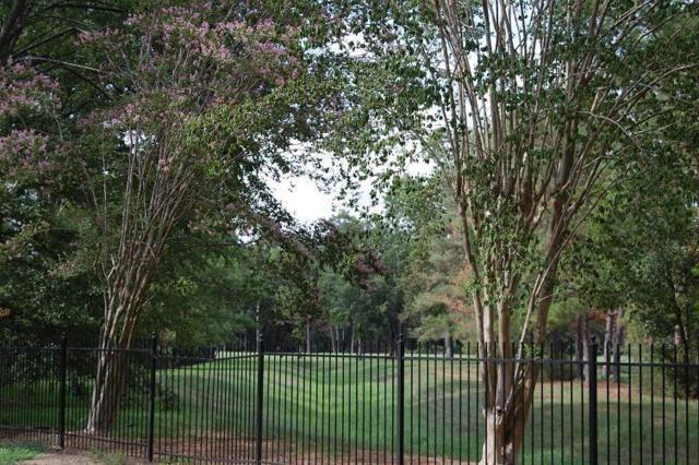 3 Rain Fern Court, Spring, TX 77380 (MLS #11071912) :: Giorgi Real Estate Group